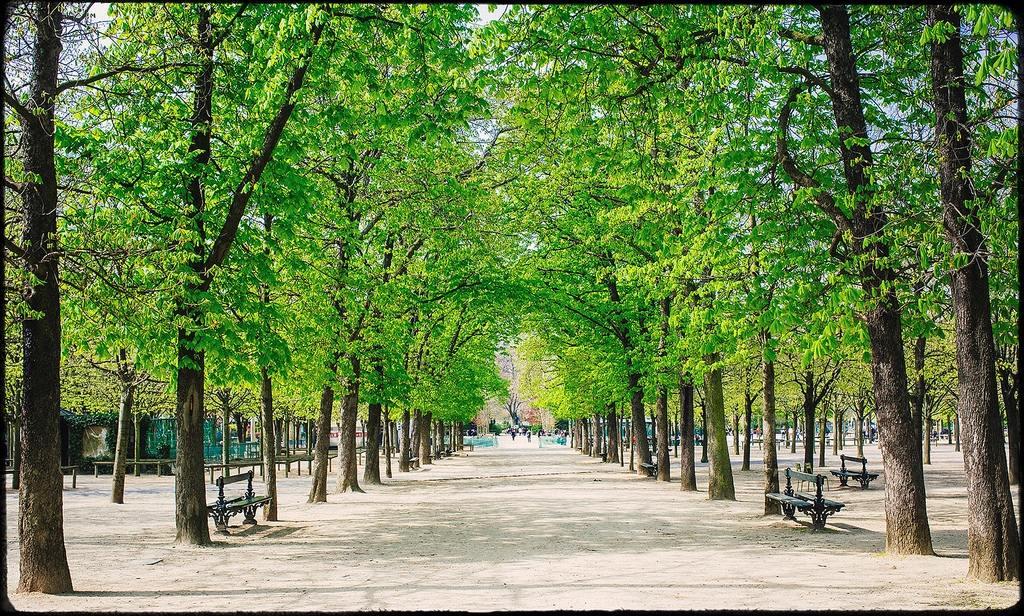 A hotel close to the jardin du luxembourg paris luxembourg garden for Hotels near luxembourg gardens